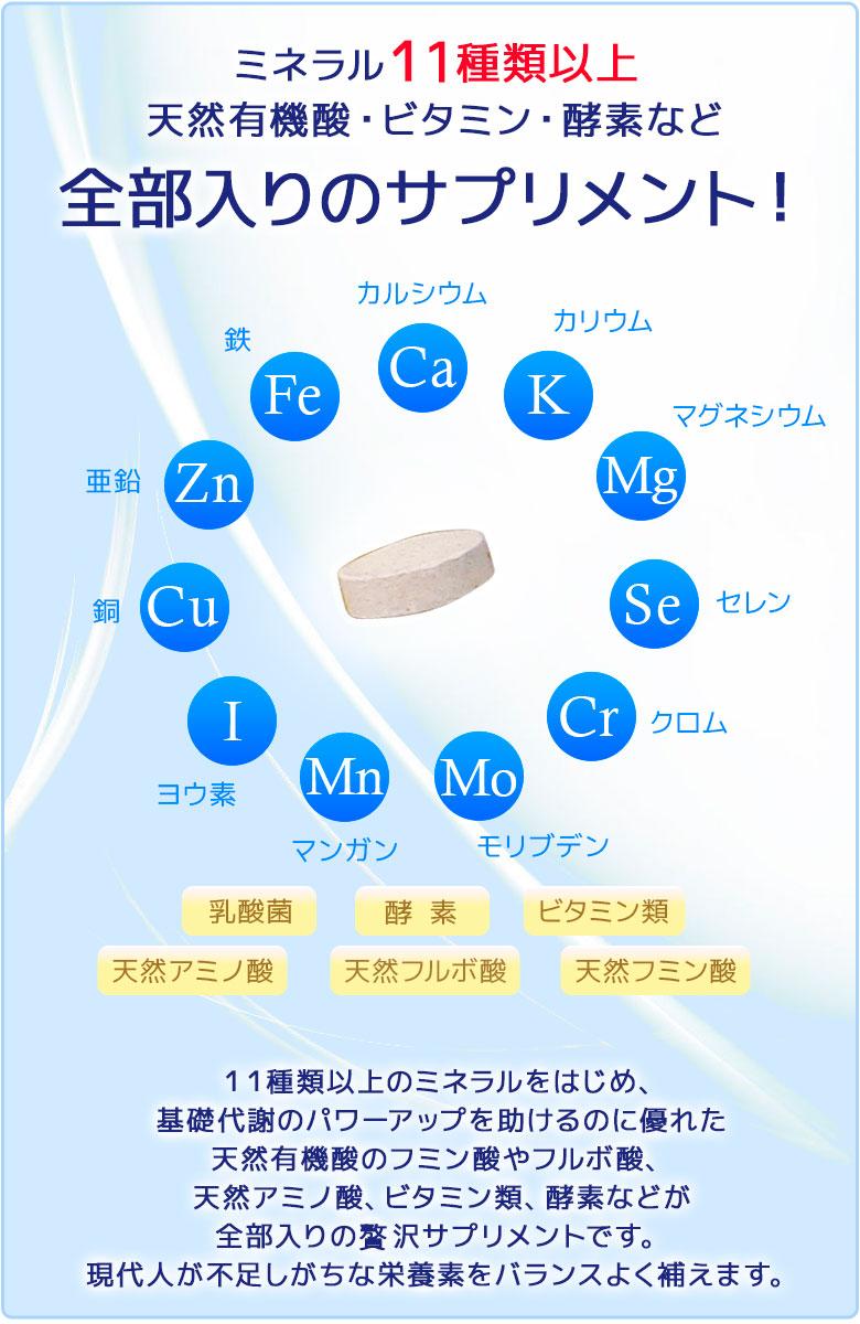 11種類のミネラル成分