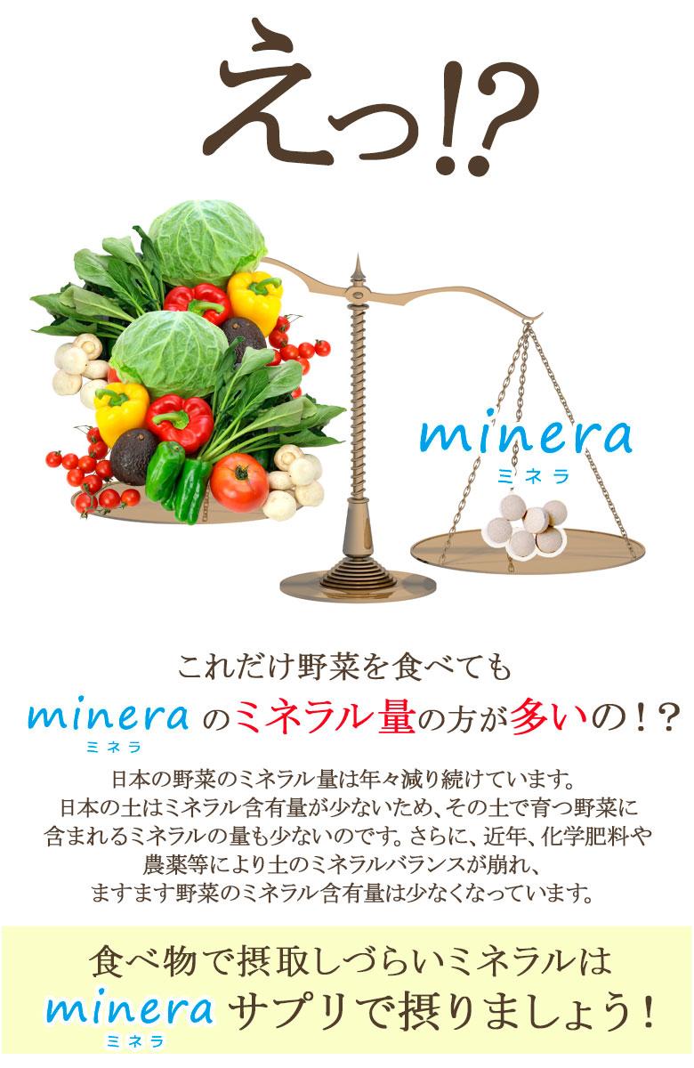 えっ!?野菜よりもミネラルが多い